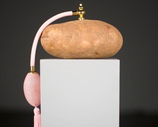 06-Wendy_Mason,_Fragrance_of_2009,_potato,_perfume_dispenser,_dimensions_variable